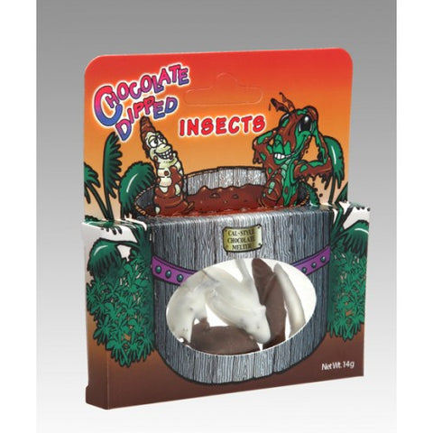 Chocolate Flavour Dipped Insects | 4 Per Pack