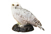Snowy owl (Bubo scandiacus) Ex Museum Taxidermy - Natural History Direct Online Shop - 2