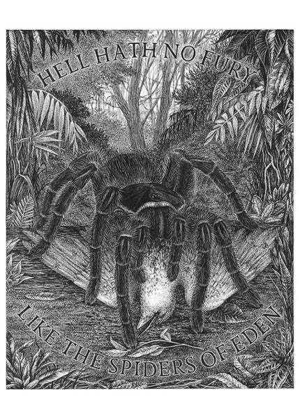 Spider of Eden A4 limited edition art print
