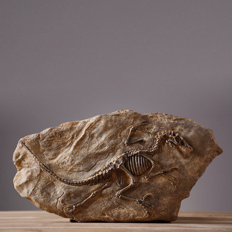 Resin dinosaur fossil Jurassic home decor