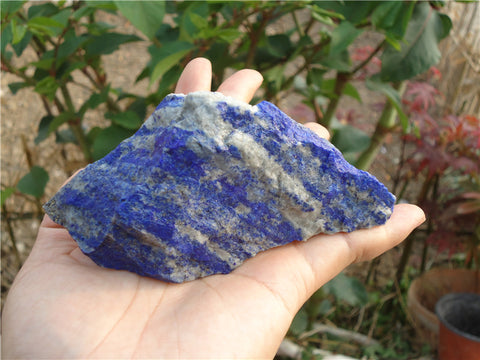 1775Ct . Natural Untreated Lapis Lazuli Gemstone Mineral Rough from Afghanistan 60mmX110mm