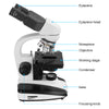 40X-1600X Professional Binocular LED Biological Compound Microscope