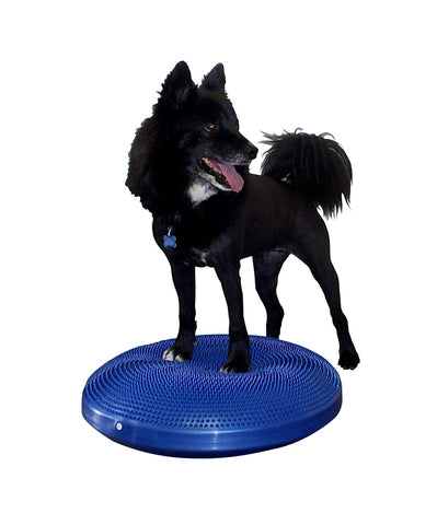 Balance Disc by FitPAWS®