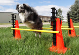 Hurdle Set by FitPAWS®