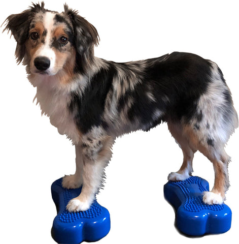 FitPAWS® Mini K9FitBones (Package of 2)