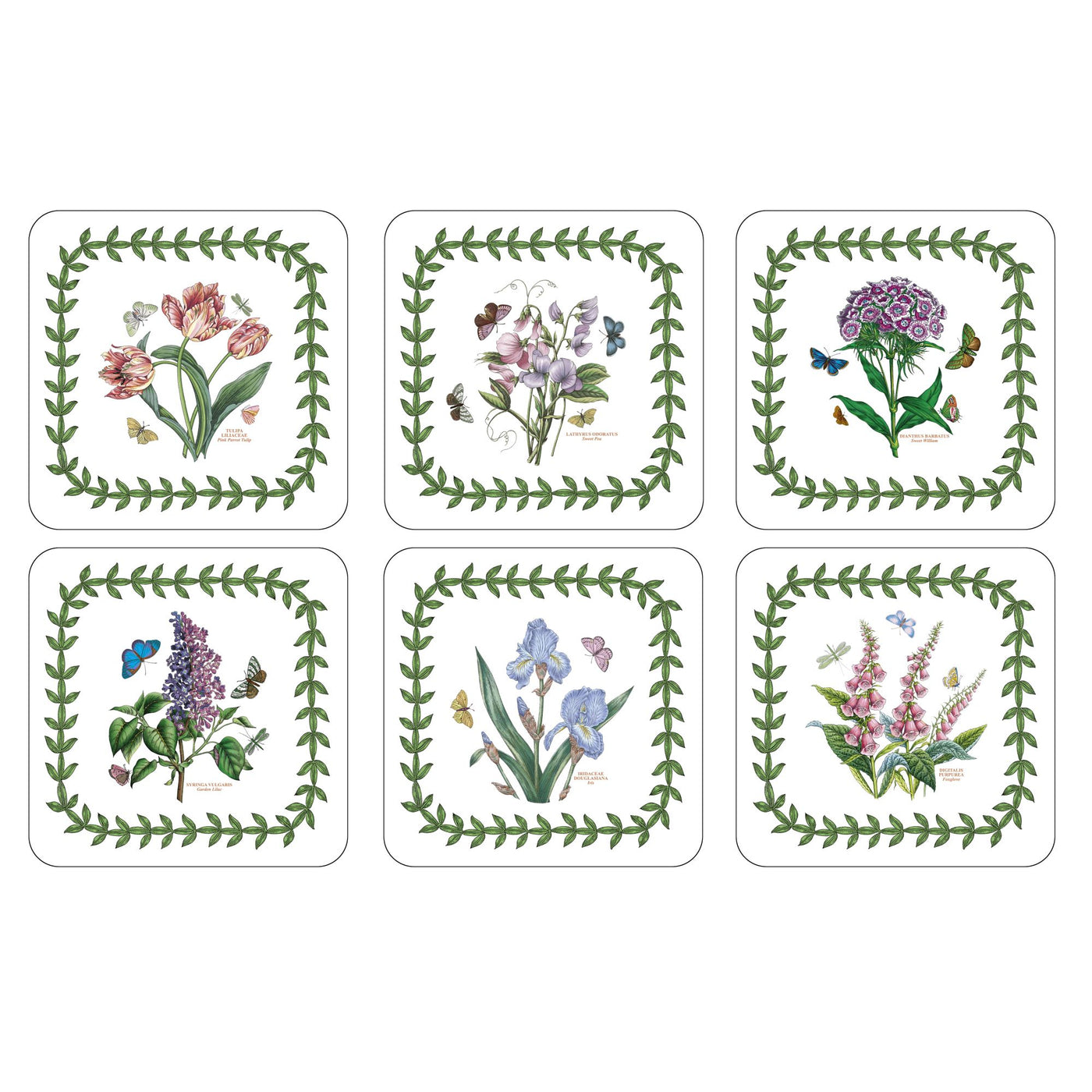 Botanic Garden Coasters, Set of 6