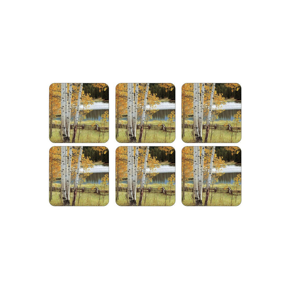 Birch Beauty Coasters ,Set of 6