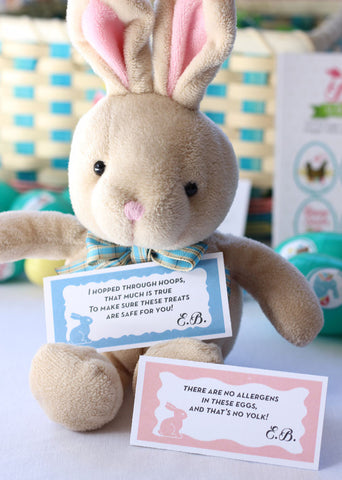 Allergy-Friendly Easter Activity Set by food Allergy Superheroes awareness gear products teal eggs Easter Bunny Egg Hunt