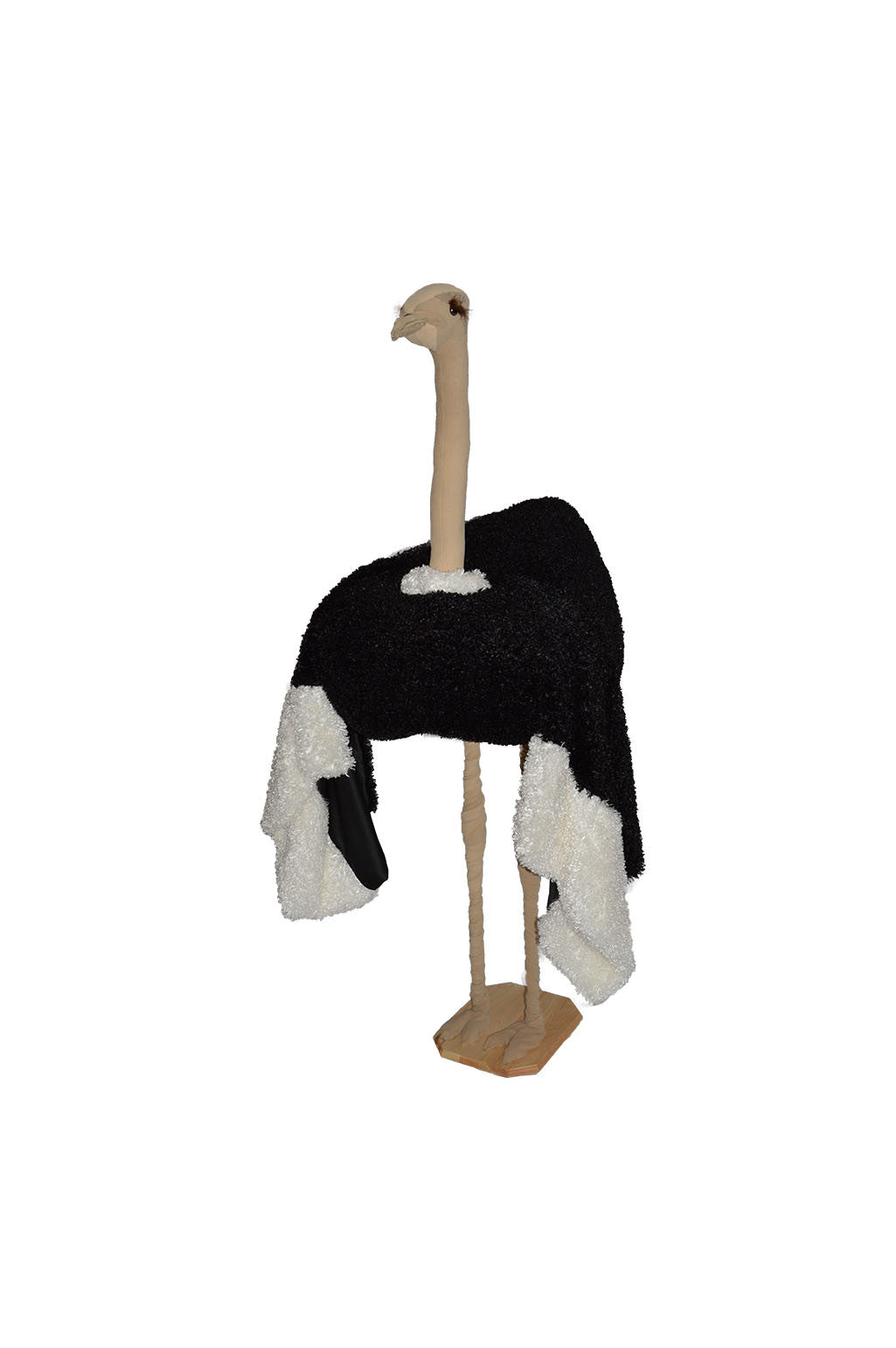 """Ossie"" the Ostrich"