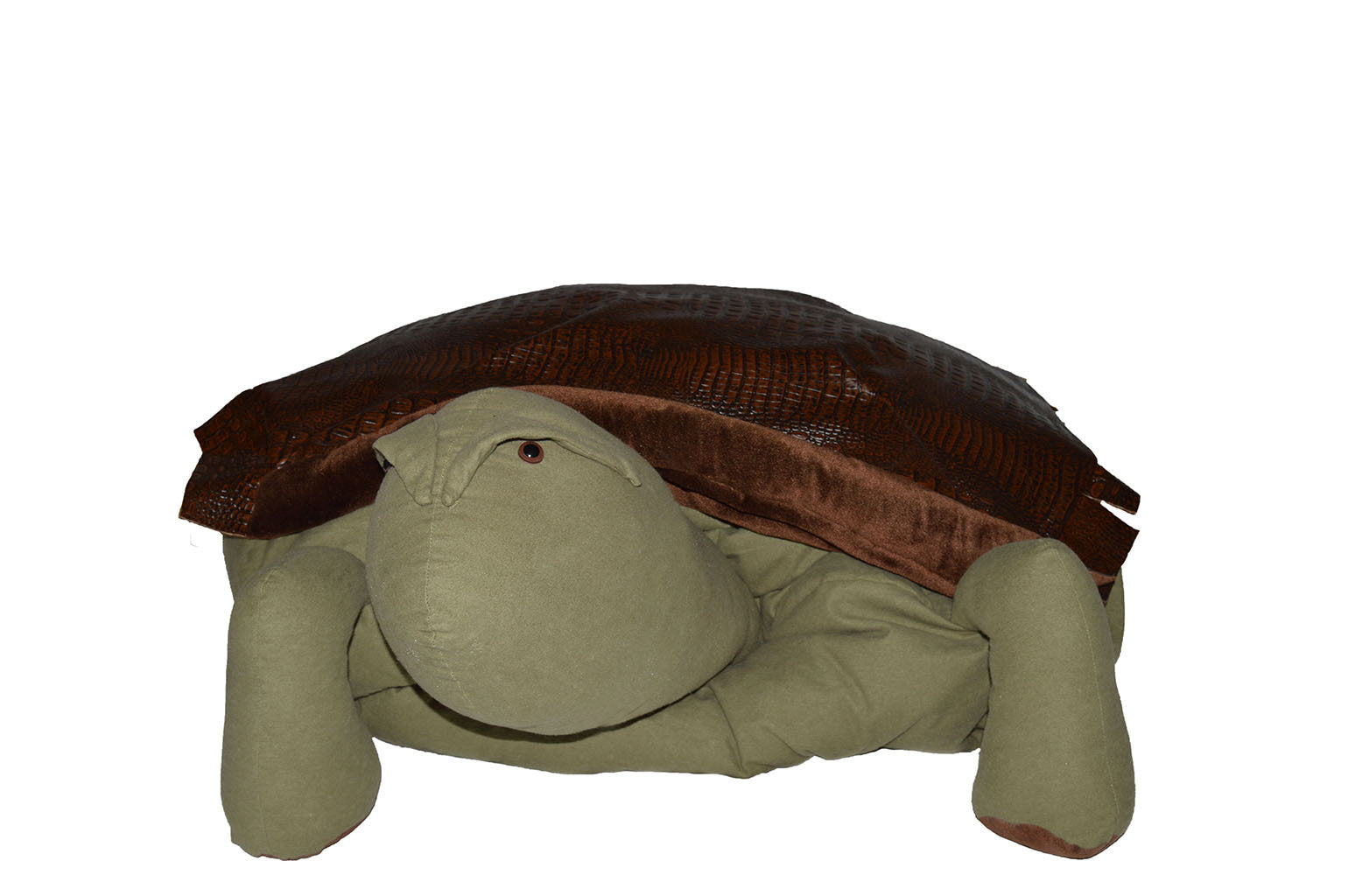 """Hurtle"" the Turtle"