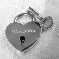 Personalised Engraved 25mm Silver Heart Padlock - GiftedinDesign
