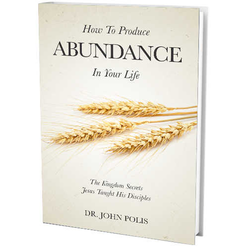 How To Produce Abundance In Your Life (book)