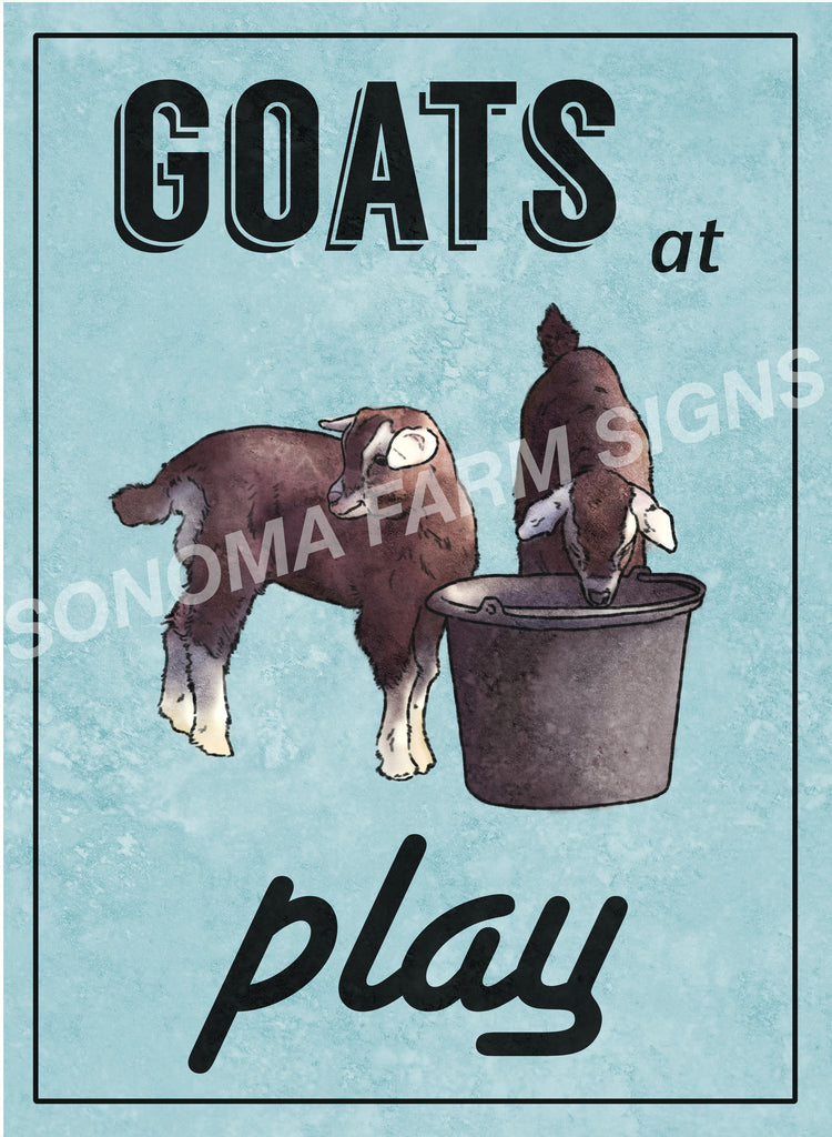 Goats at Play