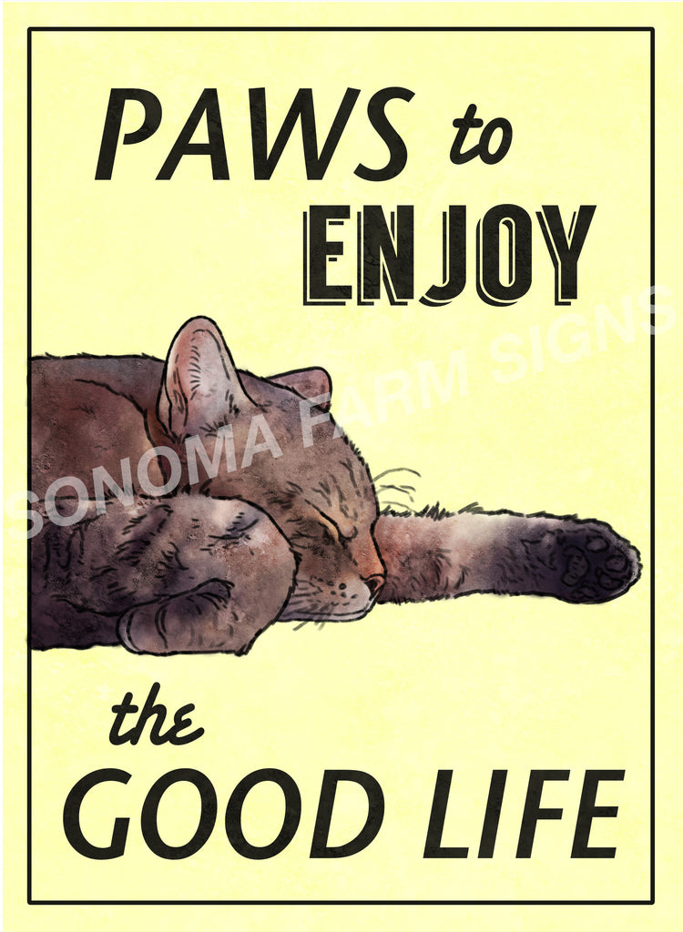 Paws to Enjoy Life