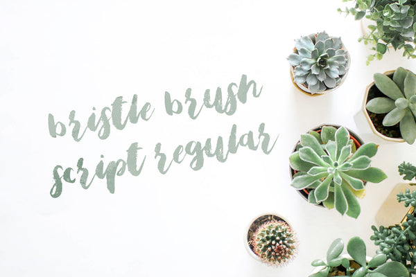 Full version of Bristle Brush Script Regular