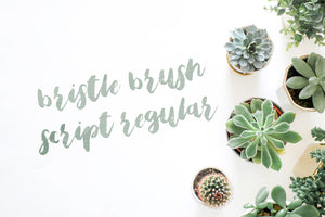 Bristle Brush Script Regular modern calligraphy handwriting font by Out of Step Font Company - outofstepfontco.com