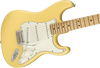 Fender Player Stratocaster Electric Guitar in Buttercream, white Scratchplate