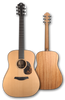 Furch Indigo Series Dreadnought Acoustic Guitar