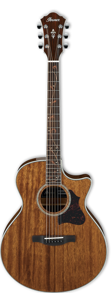 Ibanez AE245-NT Electro Acoustic Guitar