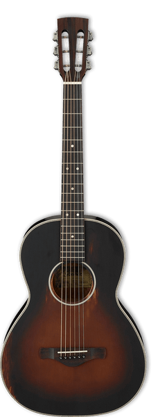 Ibanez AVN11 ABS  Acoustic Guitar