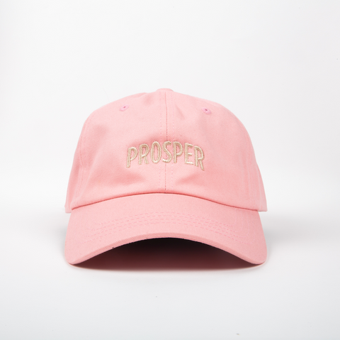 NECESSARY DAD HAT (PINK)