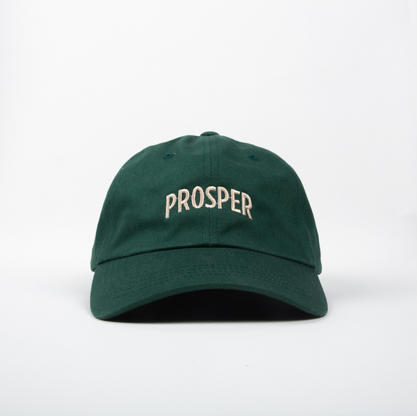 NECESSARY DAD HAT (SPRUCE GREEN)