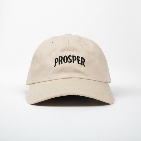 NECESSARY DAD HAT (STONE)
