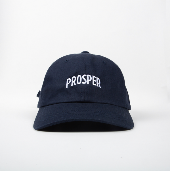 NECESSARY DAD HAT (NAVY)