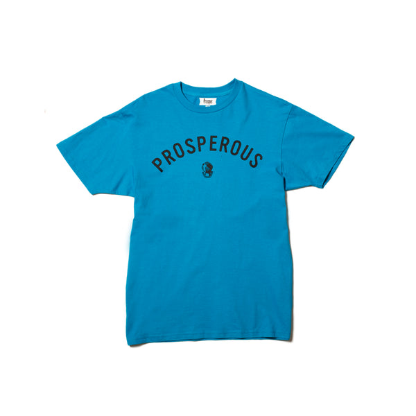 PROS DIVER S/S TEE (TURQUOISE)