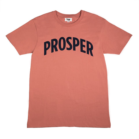 NECESSARY 2 S/S TEE (DUSTY ROSE/NAVY)