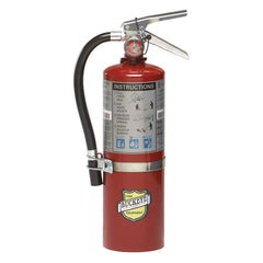 Fire Extinguisher Buckeye 5 lb. ABC - Rechargeable Tagged
