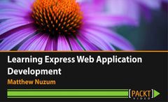 Learning Express Web Application Development