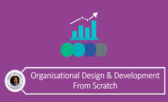 Organisational Design And Development From Scratch