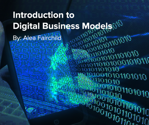 Preview of Introduction to Digital Business Models