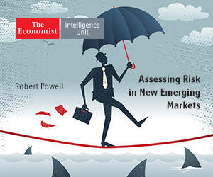 Assessing Risk in New Emerging Markets