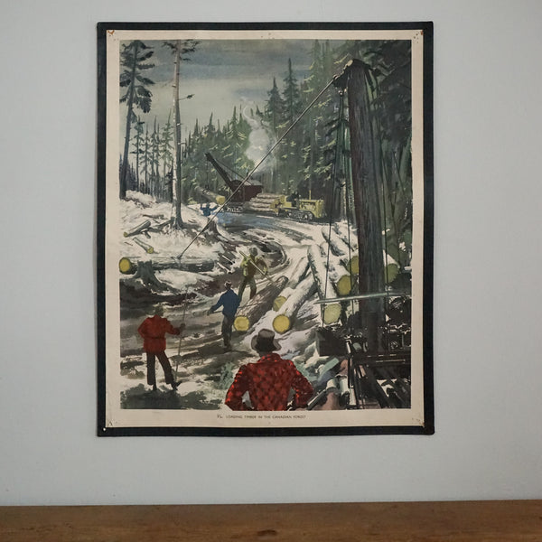 1950's Educational Lumberjack Poster