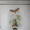 Stages in the Life History of Moths - C . Educational Poster