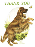 Irish Setter Thank You Card artwork by Telia Fleming Hanks