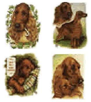 Irish Setter Stickers artwork by Telia Fleming Hanks