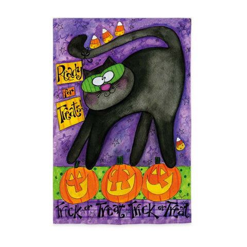 Evergreen Garden flag Trick or Treat Cat Halloween   Clearance - Chicky Dee's Gifts