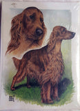 Irish Setter Head and Body Card artwork by Telia Fleming Hanks