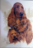 Irish Setter Family Tree Limited Edition Print artwork by Telia Fleming Hanks