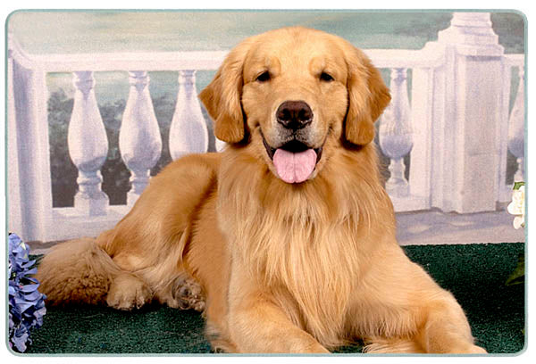 Canine Designs Golden Retriever on Porch Tempered Glass Cutting Board