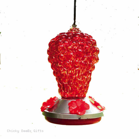 Evergreen Hummingbird Feeder Glass Red Grapes top feeder 2HF040 - Chicky Dee's Gifts - 1