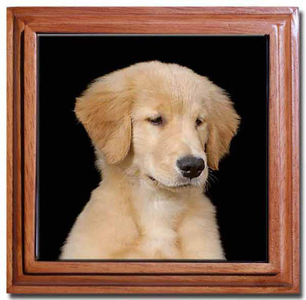 Canine Designs Golden Retriever Puppy Tile Trivet