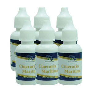Cineraria Marítimina Eye-Drops 6-pack