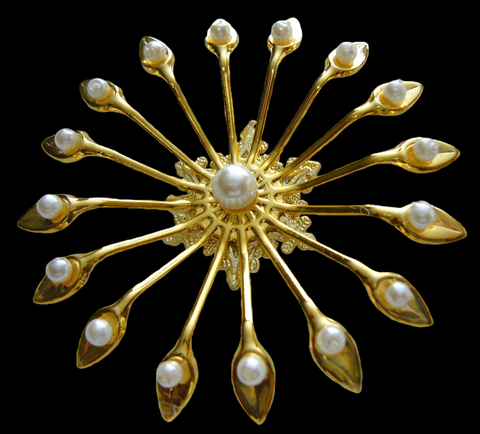 Stunning Brooch Jewelry