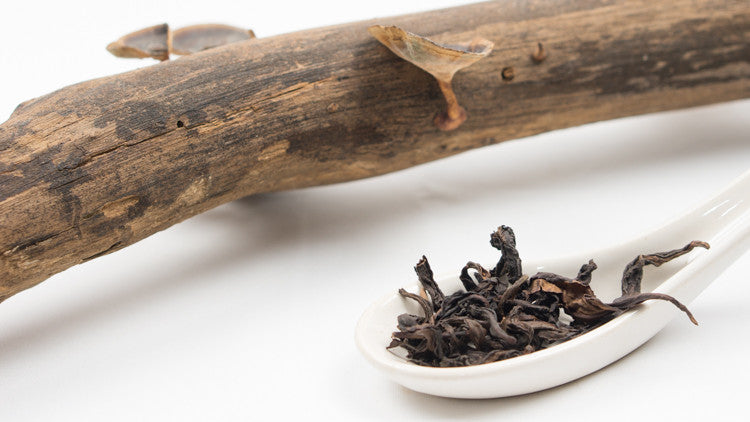 Aged or Rare Heirloom Oolong Teas