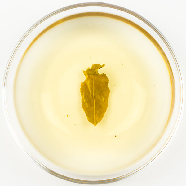 "Jin Xuan ""Golden Lily"" Certified Organic Oolong Tea - Winter 2016"