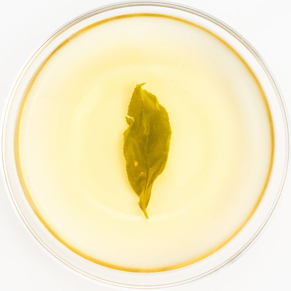 Wu She Gao Feng High Mountain Jade Oolong Tea - Spring 2016